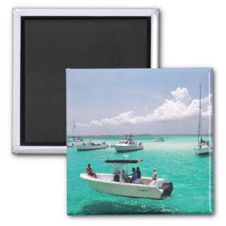 Stingray City Grand Cayman Islands Magnet