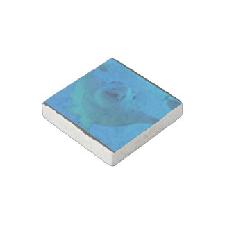 Stingray Stone Magnet