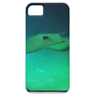 Stingray Iphone case iPhone 5 Cases