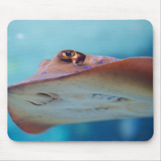 Stingray Mouse Pad