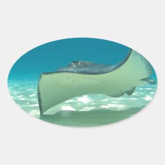 Stingray Oval Sticker