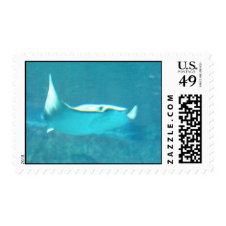 Stingray Postage Stamp