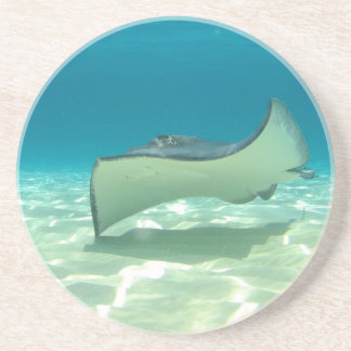 Stingray Sandstone Coaster