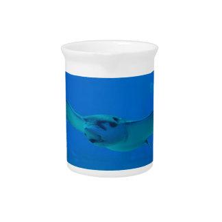 Stingray Swimming Under Water Pitcher
