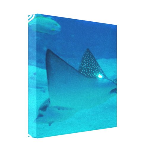 Stingray Underwater Canvas Print