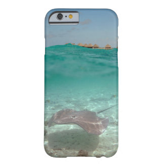Stingray underwater in Bora Bora Barely There iPhone 6 Case