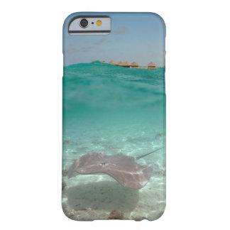 Stingray underwater in Bora Bora iPhone case