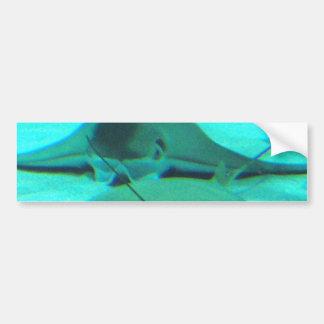 Stingrays on Ocean Floor Bumper Sticker Car Bumper Sticker