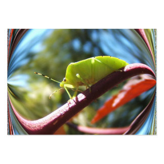 Stink bug 216 ~ ATC Large Business Card