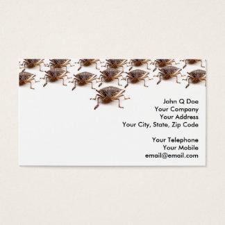 Stink or Shield bug for pest exterminator Business Card
