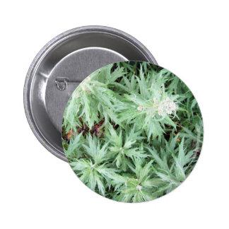 stink weed 2 inch round button
