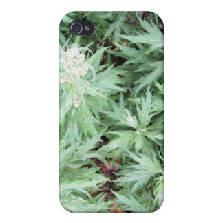 stink weed cover for iPhone 4