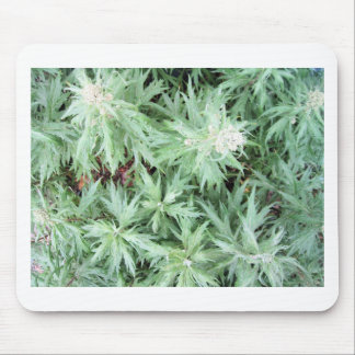 stink weed mouse pad