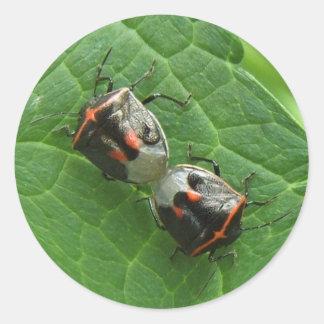 Stinkbugs ~ sticker