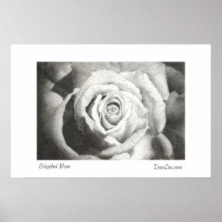 Stippled Rose Poster White Border