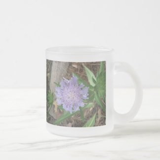 Stokes Aster, Stokesia laevis 10 Oz Frosted Glass Coffee Mug