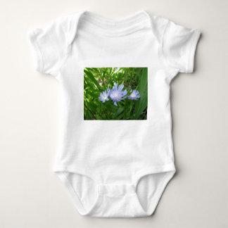 Stokesia, Stokes Aster Baby Bodysuit