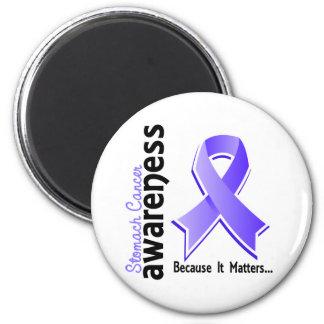 Stomach Cancer Awareness 5 Magnet
