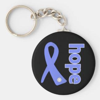 Stomach Cancer Hope Ribbon Key Chains