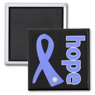 Stomach Cancer Hope Ribbon Magnet