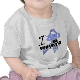 Stomach Cancer - I am a Survivor Tshirt