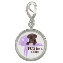 Stomach Cancer | Periwinkle Cancer Ribbon Charm