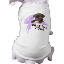 Stomach Cancer | Pray for a Cure Tee