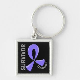 Stomach Cancer Survivor 12 Keychains