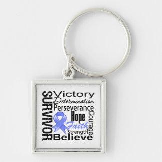 Stomach Cancer Survivor Collage Keychains