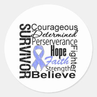 Stomach Cancer Survivor Collage Stickers