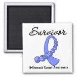 Stomach Cancer Survivor Gemstone Ribbon Magnets
