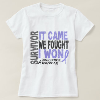 Stomach Cancer Survivor It Came We Fought I Won Tees