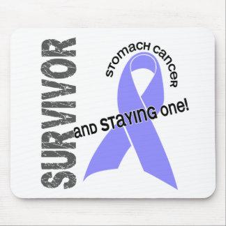 Stomach Cancer Survivor Mouse Pads