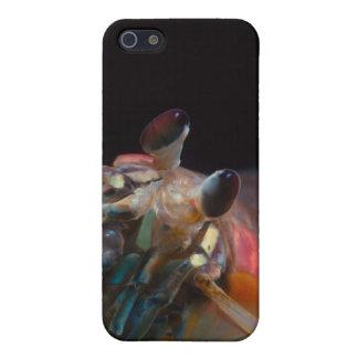 Stomatopod (camarón de predicador) iPhone 5 carcasas