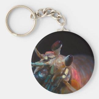 Stomatopod (Mantis Shrimp) Basic Round Button Keychain