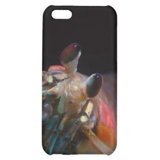 Stomatopod (Mantis Shrimp) iPhone 5C Cover