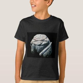 Stone art by Hart T-Shirt
