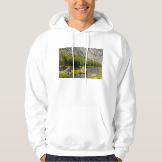 Stone At Madison River Hoodie