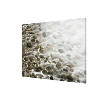 Stone Beach | Point Lobos State Reserve, CA Canvas Print