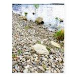Stone beach post card