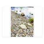 Stone beach post cards