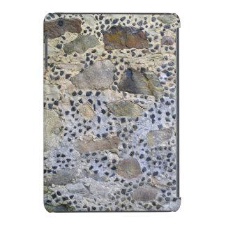 Stone Chip Wall iPad Mini Case
