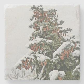 STONE COASTER/EVERGREEN TREE WITH SNOW /PINE CONES STONE COASTER