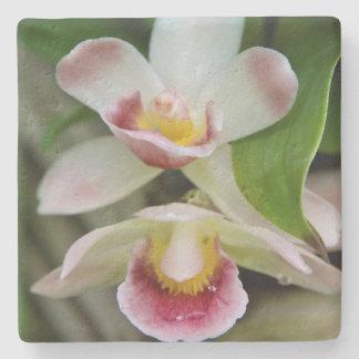 Stone Coaster - Fan Shaped Orchid
