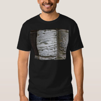 Stone Columns at Whitby Abbey Tee Shirt