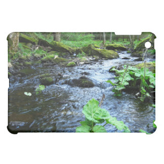 stone creek valley case for the iPad mini