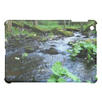 stone creek valley iPad mini cases