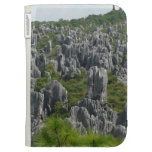 STONE FOREST 1 CASE FOR KINDLE