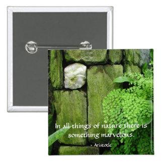 Stone Garden: Aristotle - Button #1