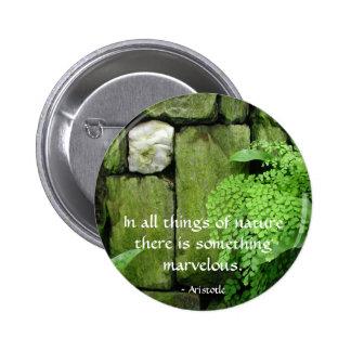 Stone Garden: Aristotle - Button #2